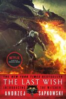 Cover for The Last Wish - The Witcher Reading Order